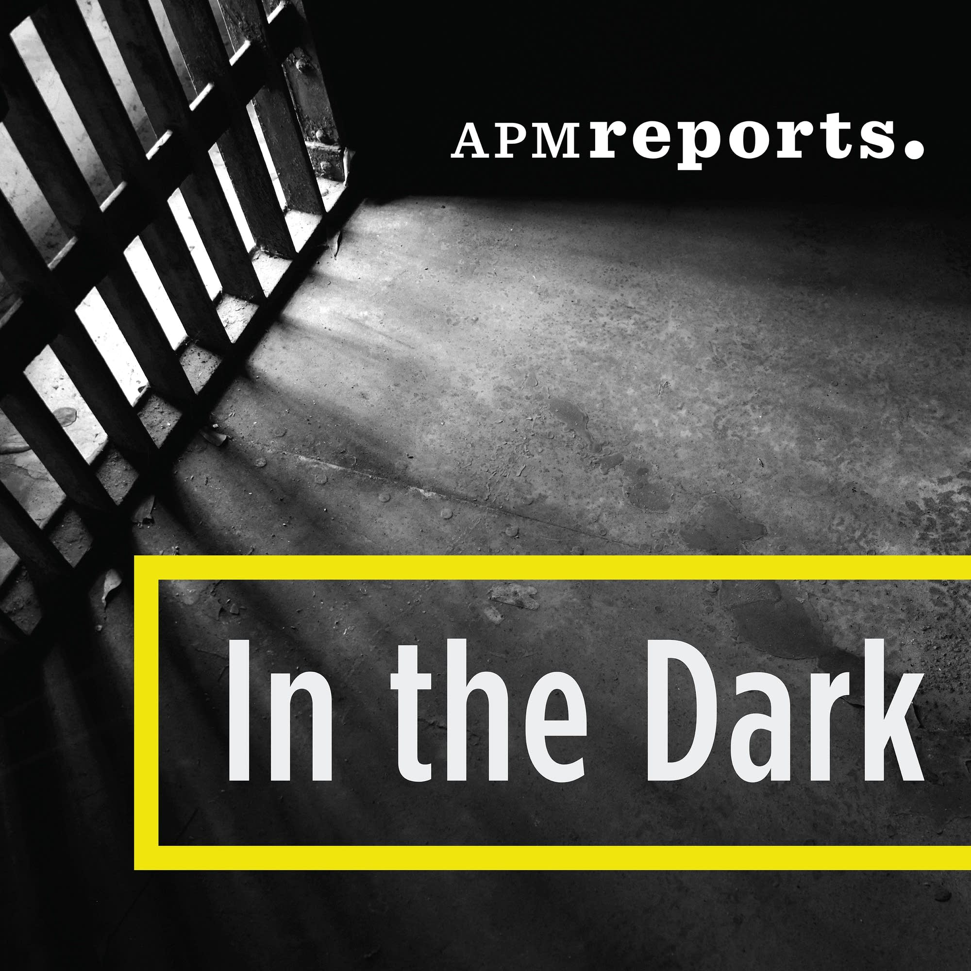 True crime podcasts, In the Dark podcast logo